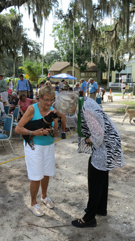 COGS Blessing of the Animals